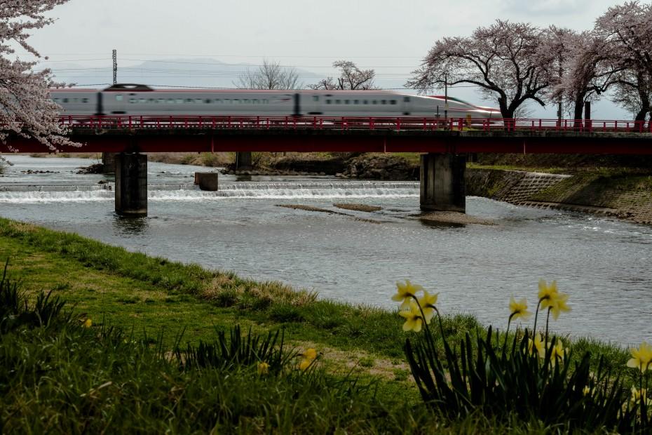 2015.04.19桜と秋田新幹線5