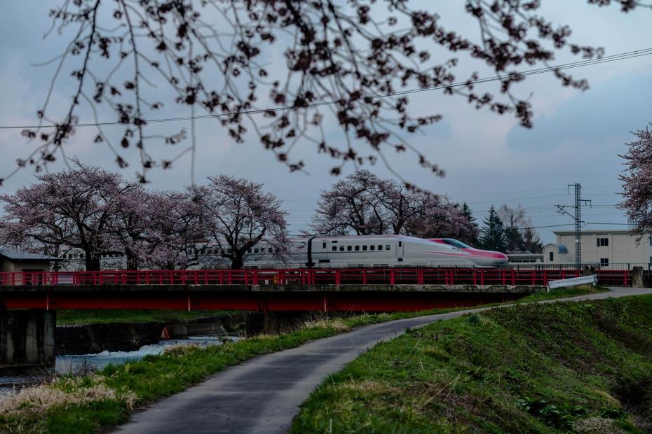 2015.04.19桜と秋田新幹線1