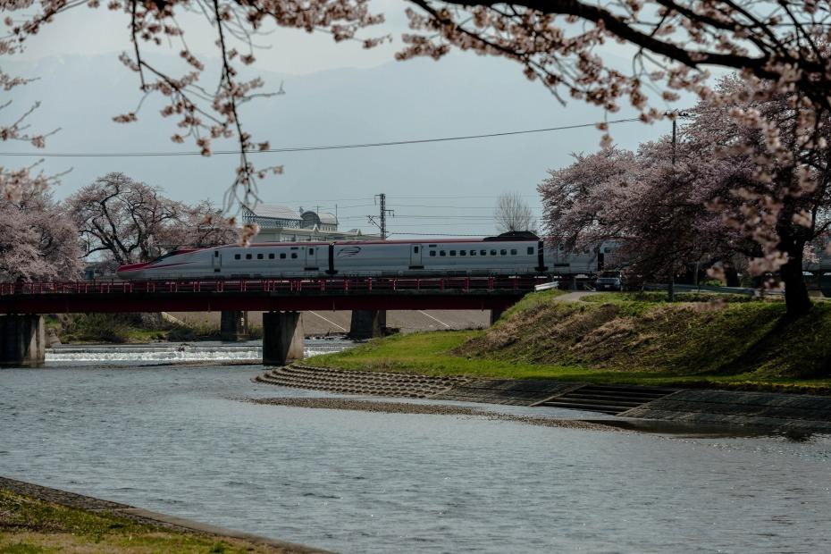 2015.04.19桜と秋田新幹線2