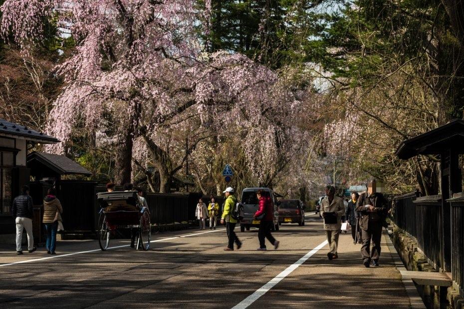 2015.04.21角館の桜14