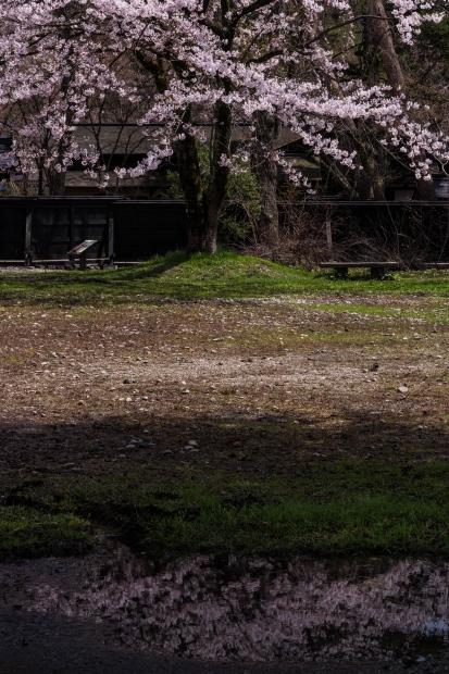 2015.04.21角館の桜13