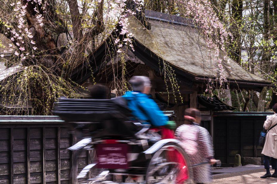 2015.04.21角館の桜5