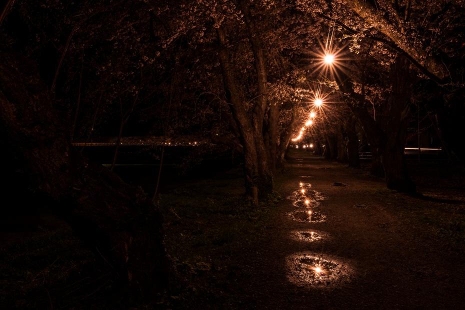 2015.04.21角館ライトアップ12