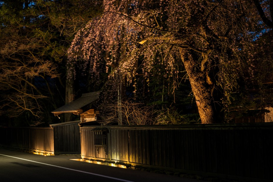 2015.04.21角館ライトアップ1