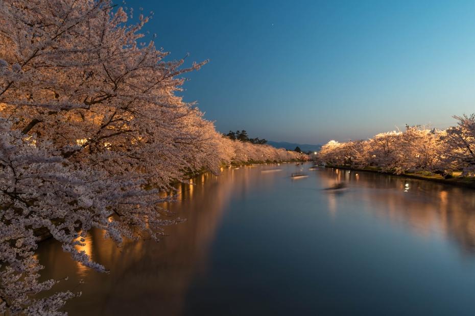 2015.04.23弘前さくらまつり夜1