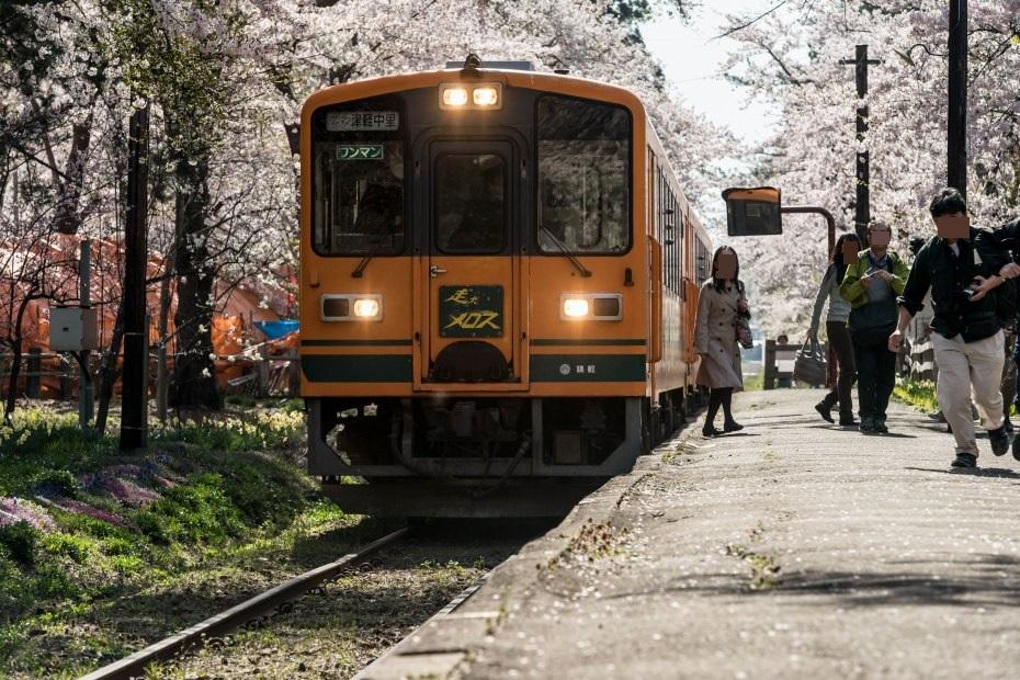 2015.04.25芦野公園の桜1