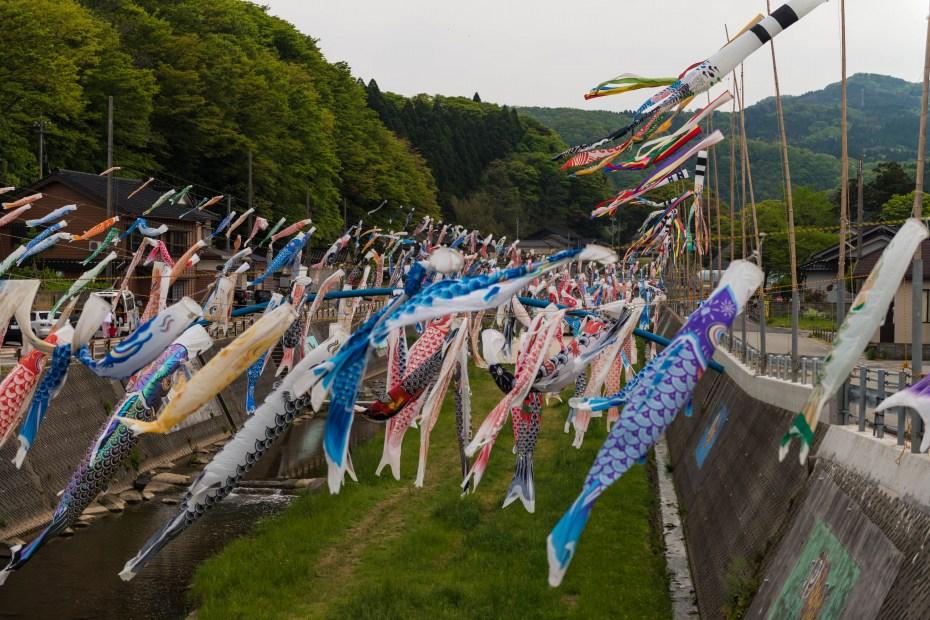 2015.05.06大谷のとキリシマツツジ12