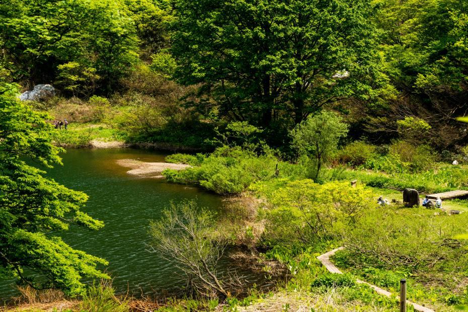 2015.05.24つくばね森林公園展望台と縄ケ池10