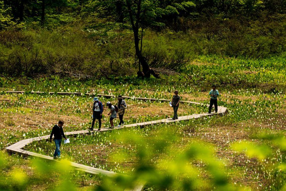 2015.05.24つくばね森林公園展望台と縄ケ池11
