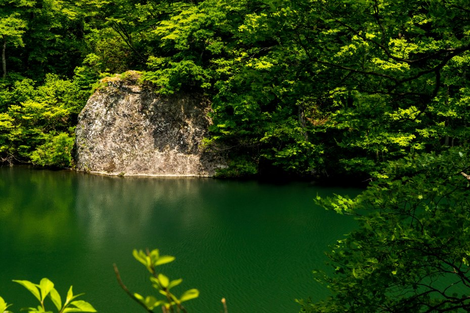 2015.05.24つくばね森林公園展望台と縄ケ池9