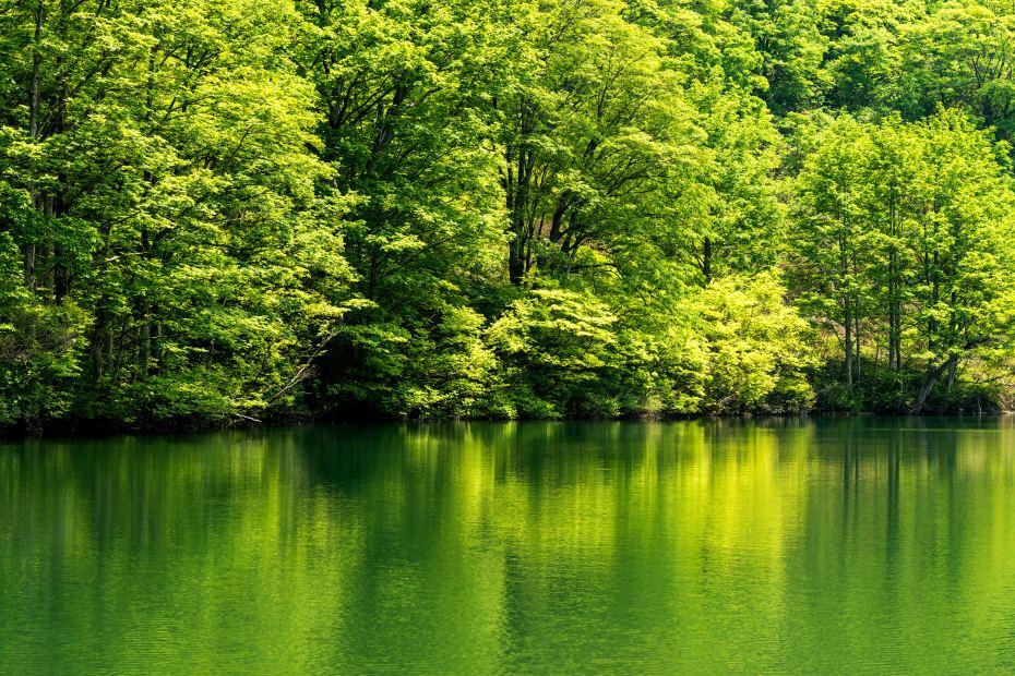 2015.05.24つくばね森林公園展望台と縄ケ池7