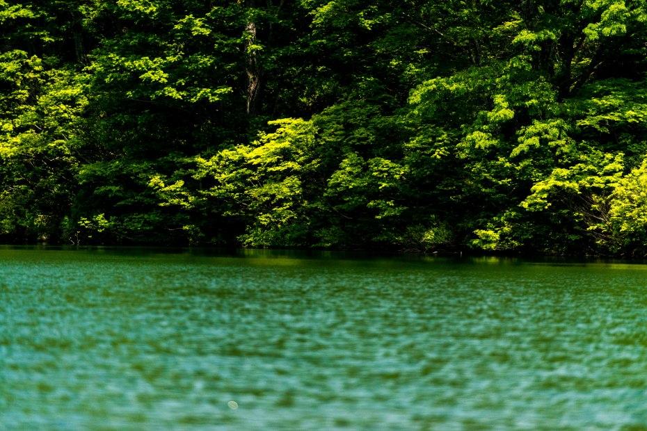 2015.05.24つくばね森林公園展望台と縄ケ池6