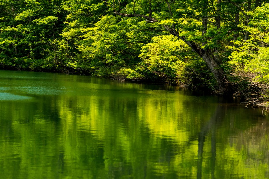 2015.05.24つくばね森林公園展望台と縄ケ池5