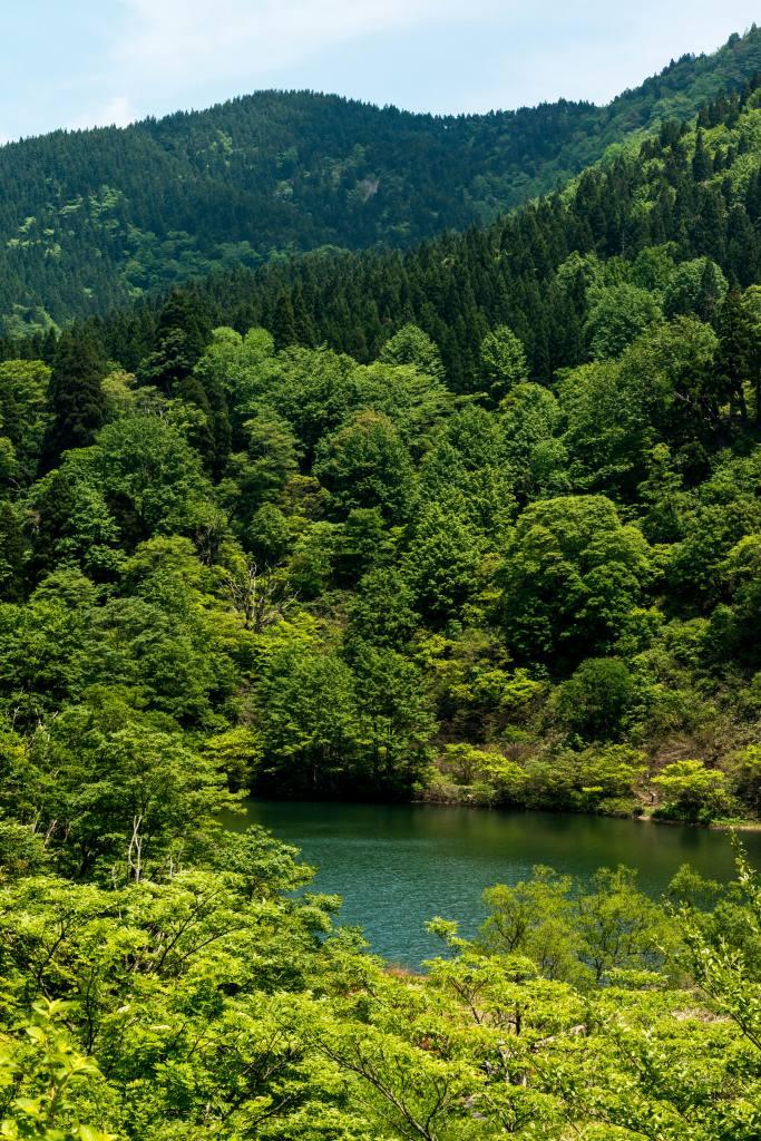 2015.05.24つくばね森林公園展望台と縄ケ池3