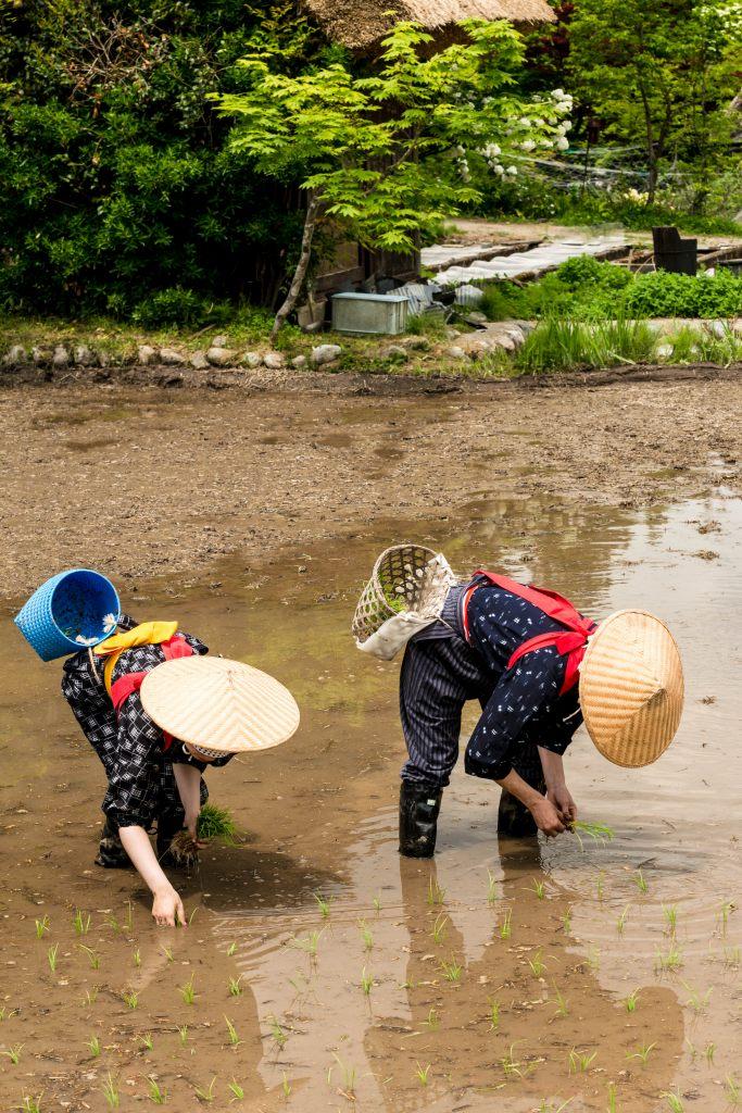 2015.05.25白川郷田植えまつり21