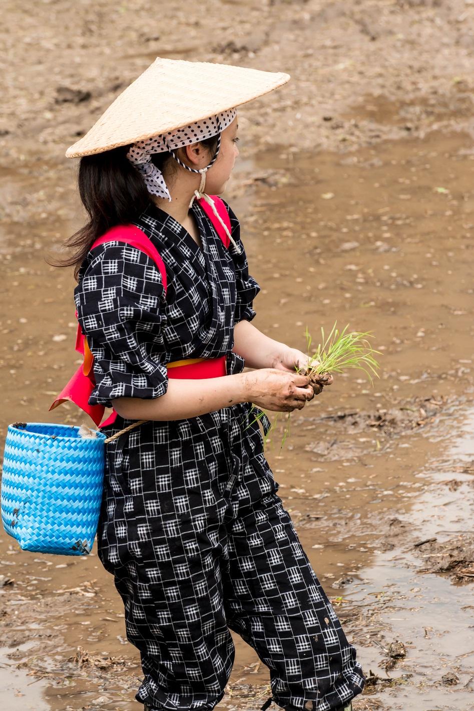 2015.05.25白川郷田植えまつり18