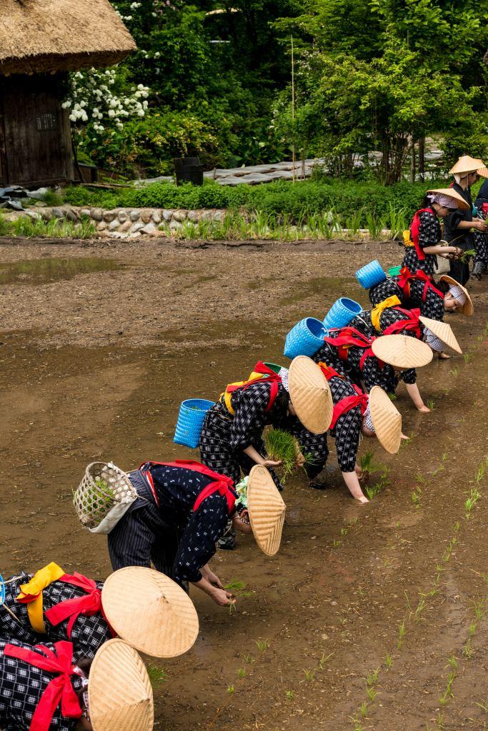 2015.05.25白川郷田植えまつり14