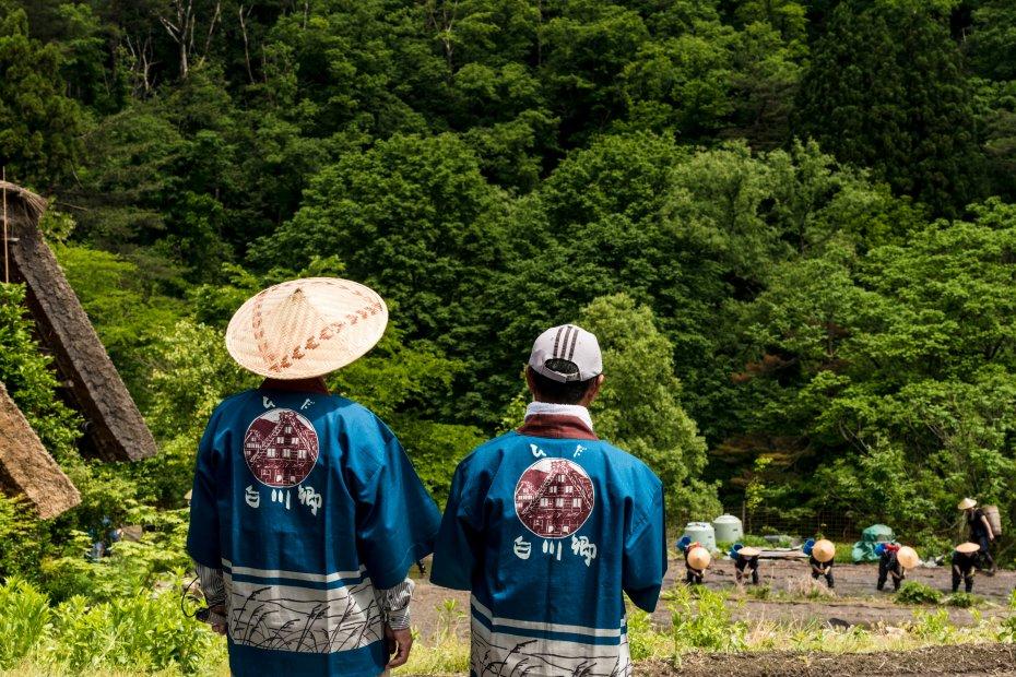 2015.05.25白川郷田植えまつり9