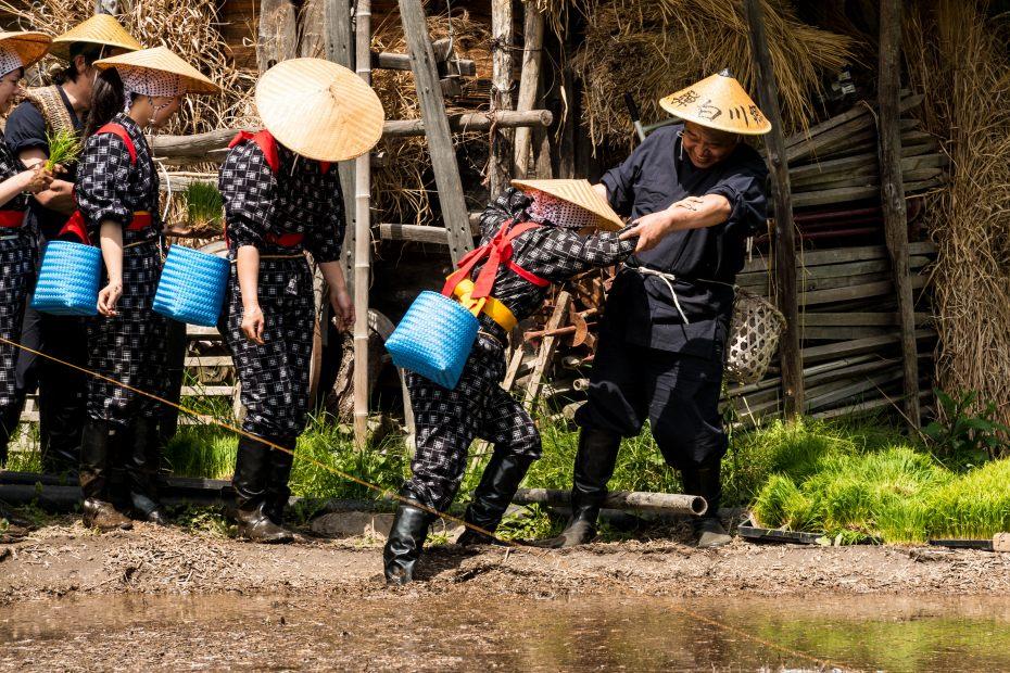 2015.05.25白川郷田植えまつり7