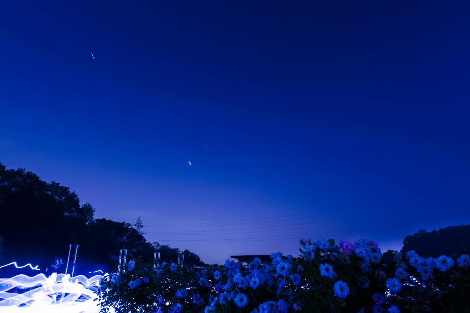 2015.05.29花フェスタ2015ぎふの花火10