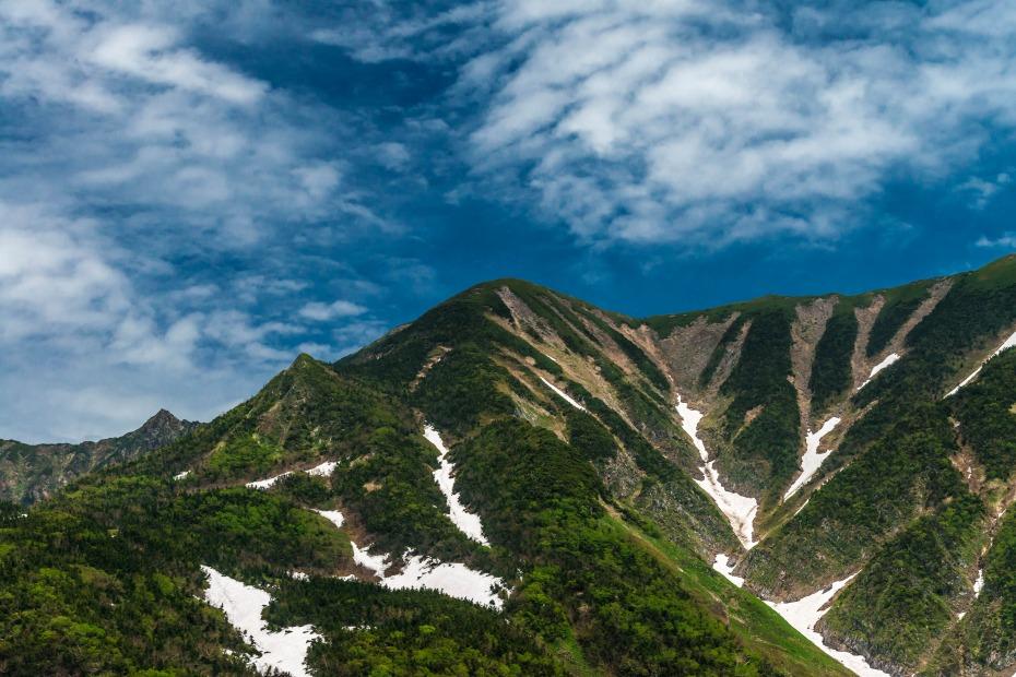 2015.06.11チブリ尾根のブナ原生林と白山眺望32.御舎利山