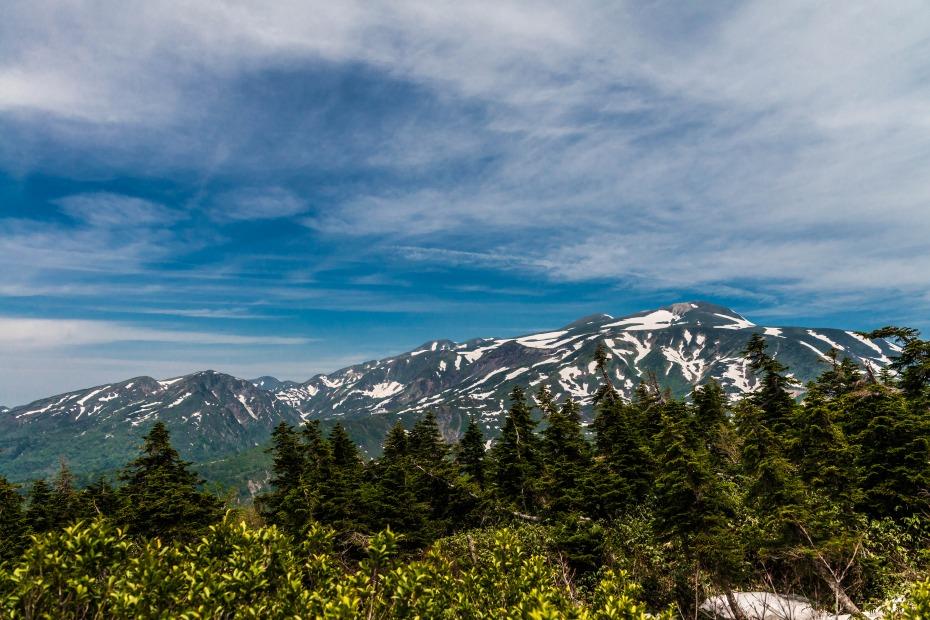 2015.06.11チブリ尾根のブナ原生林と白山眺望28.白山全容