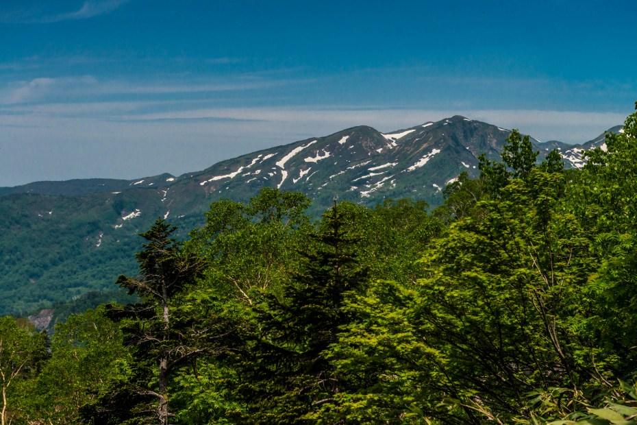 2015.06.11チブリ尾根のブナ原生林と白山眺望25.右は白山釈迦岳2053