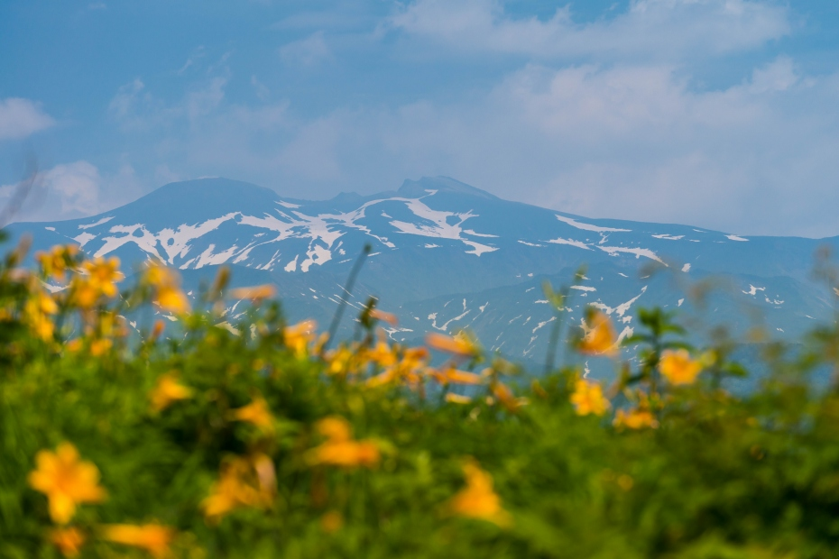 2015.06.13白山高山植物園12
