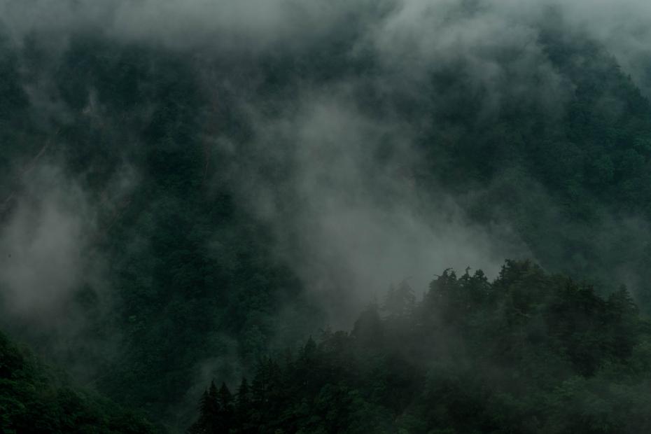 2015.06.17白山白川郷ホワイトロードに雲が湧く7
