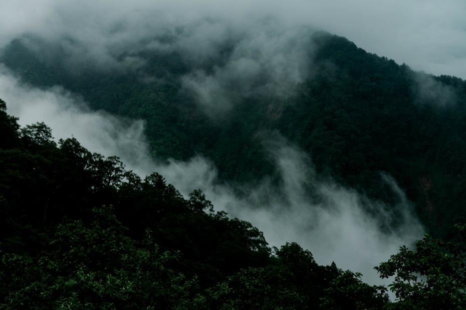 2015.06.17白山白川郷ホワイトロードに雲が湧く6