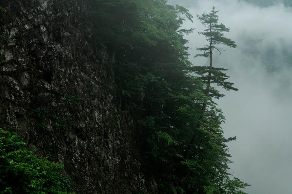 2015.06.17白山白川郷ホワイトロードに雲が湧く5