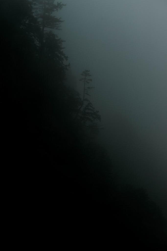 2015.06.17白山白川郷ホワイトロードに雲が湧く4