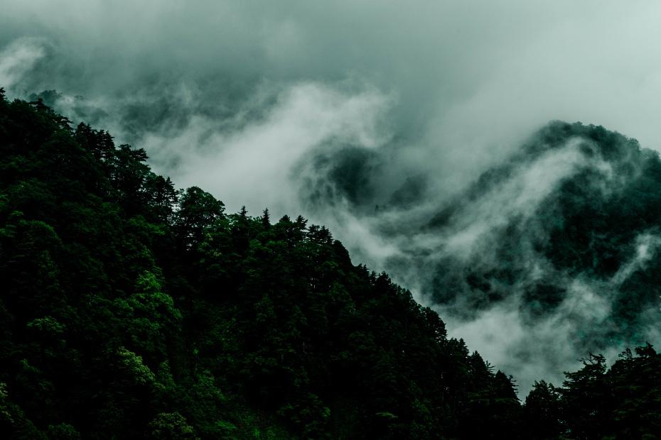 2015.06.17白山白川郷ホワイトロードに雲が湧く3