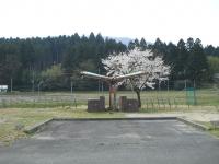 DSCN8178.jpg
