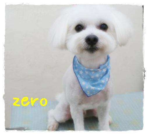 zero羽原