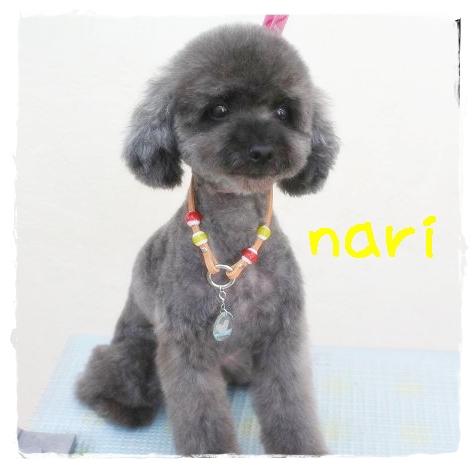 nari田辺