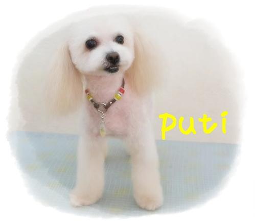 puti田辺