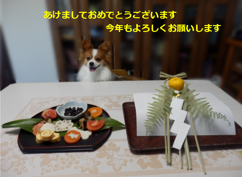 201501011.png