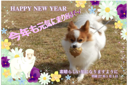 201501015.png