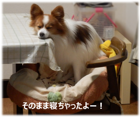201501232.png