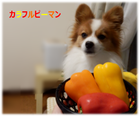 201501233.png