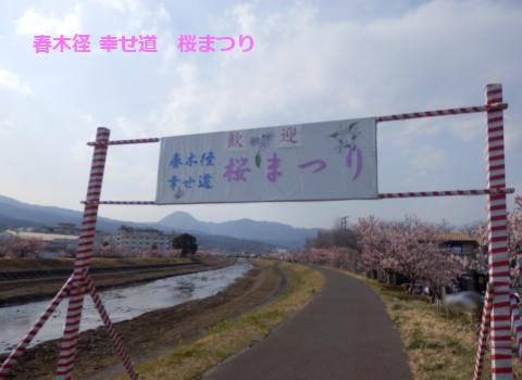 201503181.jpg
