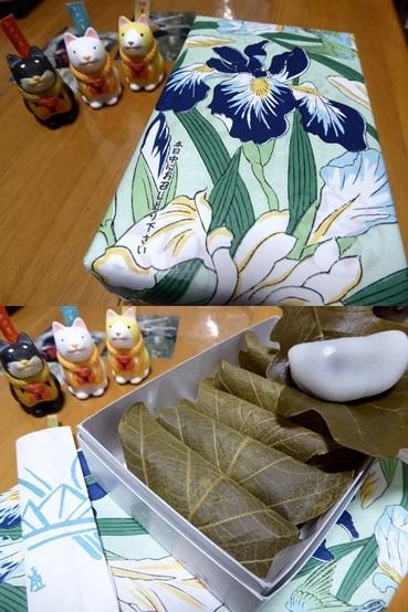 kashiwa150501-vert.jpg