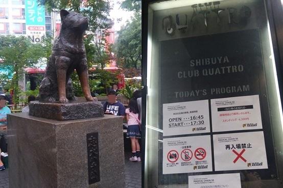 shibuya1505-horz.jpg