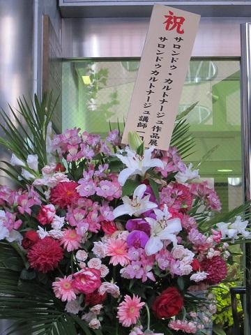 花IMG_3445
