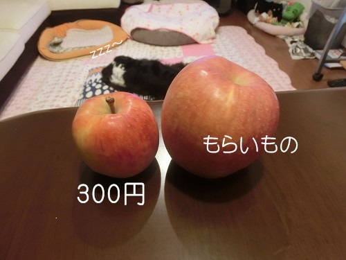 005-1_201412172144047ba.jpg