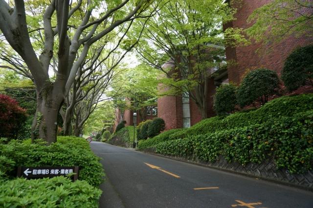 2015-05-02 (2)