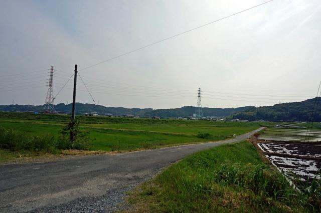 2015-05-17 (12)