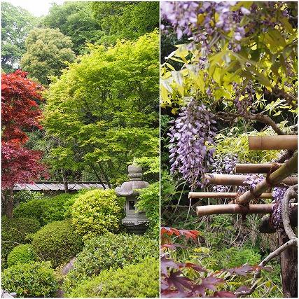 2015年4月日本民家園 (86)