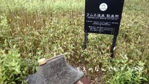 大分県 竹田市 長湯温泉 ラムネの湯